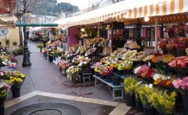 Cours Saleya Flower Market Nice